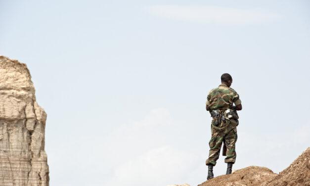 The Ethio-Sudan boundary: what's next?